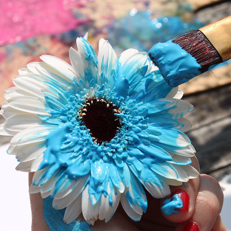 Painting on flowers with Blue color
