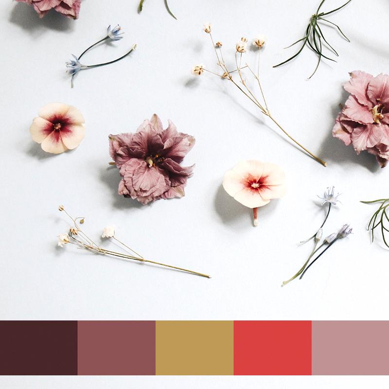 color palette by MACREATE Design